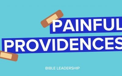 Happy Accident: Painful Providences